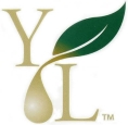 logotipo young living