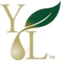 logotipo young living