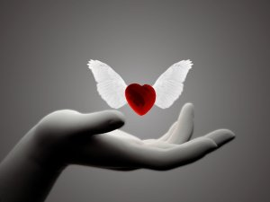 corazon-alado