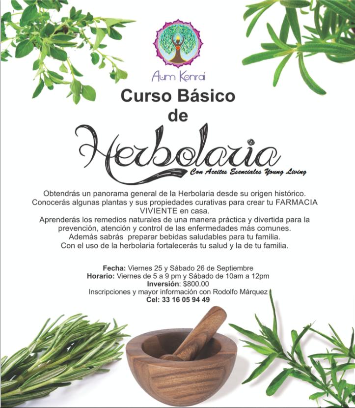 herbolaria con aceites esenciales Young Living
