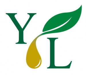 Young-Living-Logo-300x263