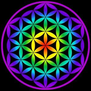 flor vida geometria sagrada