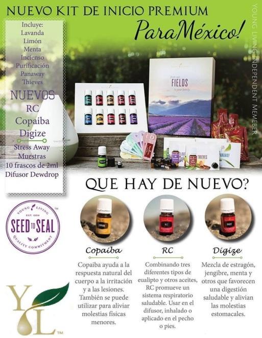 Aceites Diarios (Daily)