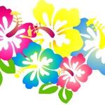separador flores hawaianas