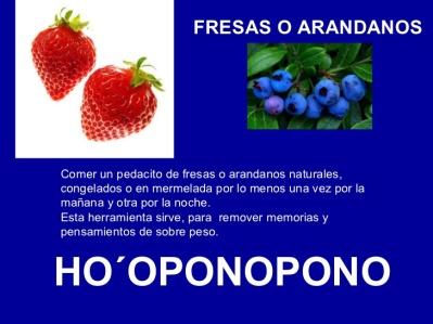 FRESAS ARANDANOS