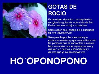 GOTAS DE ROCIO