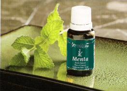 Mentha-piperita (1)