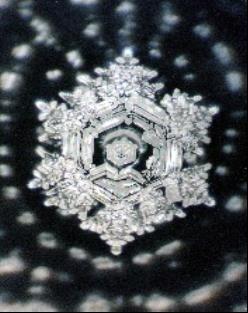 molecula agua 8