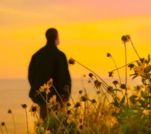 hombre atardecer flores meditar