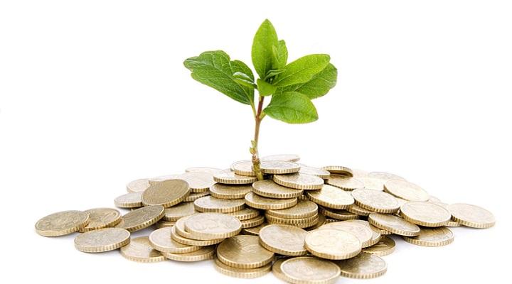 dinero arbol abundancia