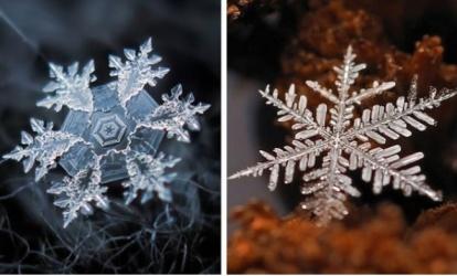 copos de nieve molecula de agua