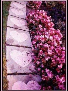 camino corazones flores