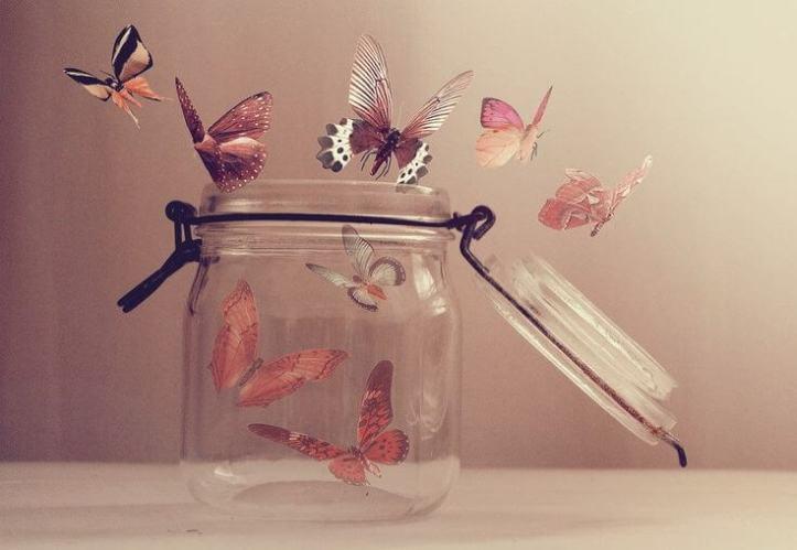 mariposas-en-frasco