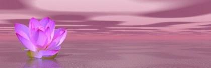 loto-violeta-reiki