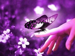 manos-mariposa