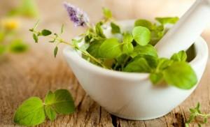 herbolaria hierbas plantas_medicinales_111