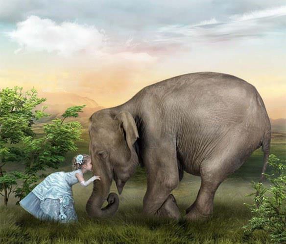 elefante niña