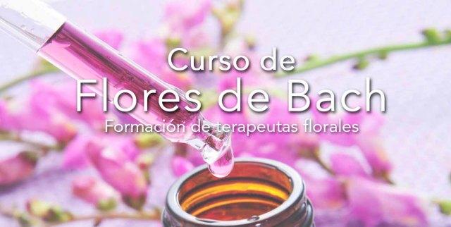 curso-de-flores-bach-banner