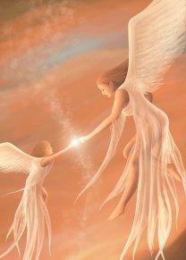 Image result for perdon con los angeles